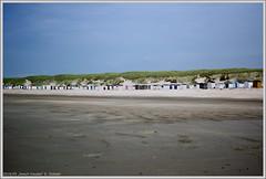beach houses (xlod) Tags: sky holland beach nature netherlands strand dune natur himmel texel beachhouse dne niederlande beachcottage strandhaus paal12 strandhtte