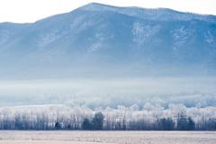 Sunrise in the Smoky Mountain (Kevin VanEmburgh Photography) Tags: travel trees mountains nature fog sunrise landscape haze nikon adventure firstlight photoproject landscapephotography kevinvanemburghphotography