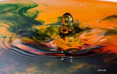 RDW_0353 (Rick Woehrle) Tags: rick woehrle waterart photography water droplets rickwoehrlephotography rickwoehrle waterdroplets