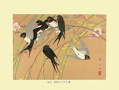 Willow, peach and barn swallow (Japanese Flower and Bird Art) Tags: flower willow salix babylonica salicaceae peach prunus persica rosaceae bird barn swallow hirundo rustica hirundinidae rakusan tsuchiya nihonga woodblock print japan japanese art readercollection