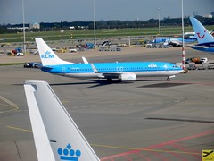 KLM B737-8K2 PH-BCD taxiing at AMS/EHAM (AviationEagle32) Tags: amsterdam amsterdamschipholairport ams amsterdamairport amsterdamschiphol schiphol schipholairport schipholviewingterrace eham panorama panoramaterrace thenetherlands holland airport aircraft airplanes apron aviation aeroplanes avp aviationphotography airbus avgeek aviationlovers aviationgeek airplane aeroplane planespotting planes plane flying flickraviation flight tarmac vehicle klm klmroyaldutchairlines airfranceklm skyteam royaldutchairlines boeing boeing737 b737 b737ng b737800 b738 b738w b7378k2 phbcd arrivals