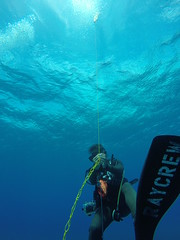 Deep blue sea!