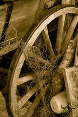 N'a plus roul depuis llongtemps (Thierry Poupon) Tags: bois cercle noiretblanc remise roue spia voiture wheel wooden blackandwhite monochrome circle