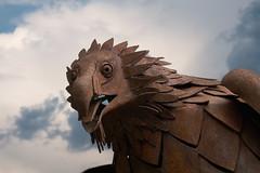 Rost ist Kunst (Ernst_P.) Tags: aut innsbruck sterreich tirol tier vogel raubvogel geier bartgeier rost metall eisen rust alpenzoo zoo