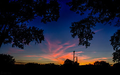 Summer Evening in the Suburbs (SerpaDesign) Tags: silhouette sunset trees dusk evening tannerserpa serpadesign