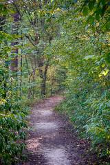 DSC03274-76_HDR (Capt Kodak) Tags: autumn chattahoocheerivernationalrecreationarea fall hdrefexpro2 madefrom3images medlockbridgepark nationalparkservice nikcollectionbygoogle niksoftware photomerge