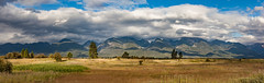 Mission mountains (michaelraleigh) Tags: 50mm landscape missionmountains serene mountains canon pinetrees summer f18 beautiful secluded summit sky outdoors green canoneos5dmarkii montana mountain field