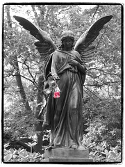 Sorrow (1elf12) Tags: engel angel red rot partialcolor selectivecoloring ohlsdorf hamburg germany deutschland friedhof cemetary parkfriedhof statue flower blume rose