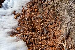 Bryce Canyon-1703 (GeekFieldGuide) Tags: brycecanyon brycecanyonnationalpark geekfieldguide utah winter