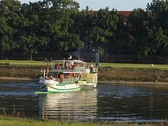Dresden-0111_1 (pischty.hufnagel) Tags: dresden elbe dampfschiff dampfschifffahrt kurort rathen wende schaufelraddampfschiff schaufelraddampfer