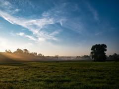 Herbstmorgen (Eva Lauermann) Tags: panasonic gm1 leica15mmf17 herbst autumn autum landschaft landscape sonnenlicht farbenfroh baum feld kraichgau wolken wetter weather