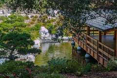 Japanese Tea House (Darkiller45) Tags: park balboa house tea japanese 70d california canon sandiego tamron lens
