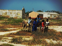 Nios wayuus (JavierPsilocybin) Tags: southamerica children colombia village desert donkeys indian pueblo nios desierto burros sudamerica indigena wayuu laguajira