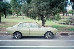 corolla (lonely radio) Tags: trees film australia melbourne victoria asphalt oldcars olympusxa thornbury whitelines pc3071 toyotacorolla auspctagged kodakektar100 fzuikof2835mm scansf20130329xaektar10003