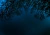 PhoTones Works #2582 (TAKUMA KIMURA) Tags: sky nature japan night landscape star spring scenery 日本 自然 風景 constellation omd kimura 春 景色 夜空 takuma 琢磨 星座 星 木村 em5 photones