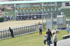20130405-_DSC4540 (Fomal Haut) Tags: horse japan nikon nagoya 80400mm d4   14teleconverter  d800e