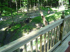 """Raised Deck over Ravine • <a style=""""font-size:0.8em;"""" href=""""http://www.flickr.com/photos/51993051@N08/8624305067/"""" target=""""_blank"""">View on Flickr</a>"""