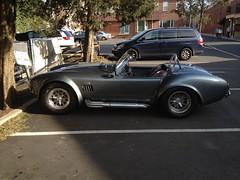 AC Shelby Cobra (Triborough) Tags: newjersey nj princeton mercercounty