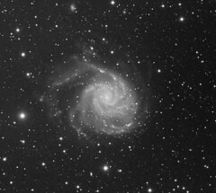 M101 (tight crop) (Daniele Malleo) Tags: sky stars astrophotography galaxies astrophoto qsi Astrometrydotnet:status=solved Astrometrydotnet:version=14400 Astrometrydotnet:id=alpha20130493503797