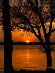Spring sunset over Kentucky Lake (VFR Photography) Tags: trees sunset lake reflection tree water silhouette reflections river gold golden spring tn tennessee ripple shoreline lakes silhouettes sunsets peaceful calm shore rivers april reflective waters ripples recreation shores waterway shimmering shimmer tennesseeriver settingsun earlyevening recreational kentuckylake henrycounty stewartcounty grayslandinglakeaccessarea