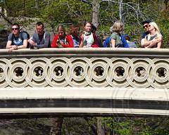 Bow Arch Bridge over The Lake, Central Park, New York City (jag9889) Tags: park city nyc bridge lake ny newyork puente arch crossing manhattan central bridges bin ponte bow pont brcke waterway olmsted bowbridge thelake vaux nycparks k616 bowarchbridge 73streetpedestrianbridge 2246160 bin2246160