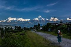 (Nathan A Rodgers) Tags: travel nepal mountain mountains nature landscape landscapes asia countries pokhara annapurna himalayas 2012 southasia travelphotography machhapuchhre annapurnasouth annapurnaiii hiunchuli machapuchare westernregion