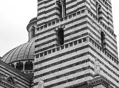 architectural forms, visual rhythms, stripes, FujifilmX10, Siena, 5.1.13 (steve aimone) Tags: blackandwhite italy monochrome architecture monochromatic architectural tuscany siena rhythm visualrhythm architecturalforms fujifilmx10