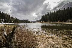 Lago di Misurina (Alessandro Boletti) Tags: mountains montagne altoadige