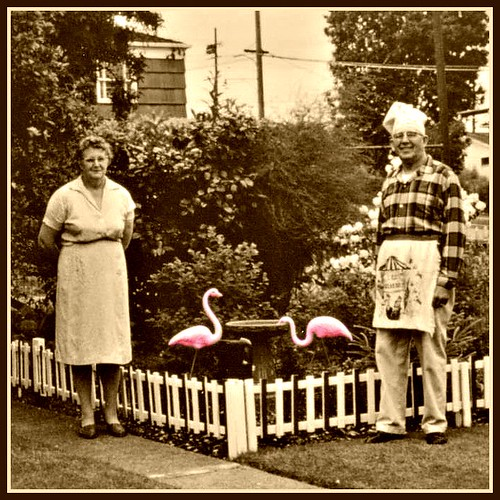 Found:  49-year-old pink flamingo sighting photo