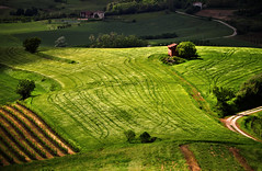 Monferrato (maurococi) Tags: italy field countryside vineyard hill piedmont lu monferrato platinumheartaward