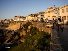 (Miguel Tavares Cardoso) Tags: portugal olympus ericeira 2013 migueltavarescardoso