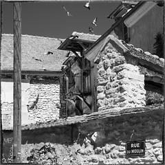 rue du Moulin NKSEP_DSF2199 (mich53 - Thanks for 2700000 Views!) Tags: monochrome carr noirblanc bw xt1 xf1655mmf28rlmwr fujifilm france pierre pigeonnier pigeon village ledefrance mantois oiseaux birds