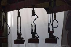 Magnets (Johan Konz) Tags: ndsm industrial heritage amsterdamnoord netherlands remnants magnetcrane shipyard nikon d90 blackandwhite indoor magnets crane backlight