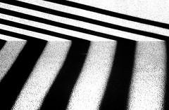 Playing with Shadows (beelzebub2011) Tags: canada britishcolumbia vancouver bw monochrome minimalist shadow