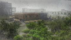 Rainy Day (peterschneider608) Tags: outside rain regen wetter weather munich mnchen bavaria bayern germany deutschland galaxy smartphone hdr photography nature natur fotografie outdoor
