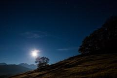 Am Geroldsee bei Vollmond-0412 (Holger Losekann) Tags: geroldsee nachtaufnahme sternenhimmel tourmitchristian