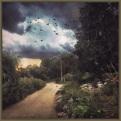 Thunderclouds in Tarusa. (odinvadim) Tags: mytravelgram iphoneart iphone sunset iphoneography iphoneonly painterly rain evening clouds painterlymobileart snapseed textures travel instapickskyart graphic landscape