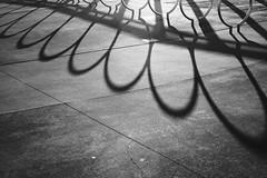 Untitled 92 (Takako Kitamura) Tags: bw blackwhite shadow round curve pattern abstract