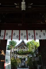 20160806 Ofusa Kannon 1 (BONGURI) Tags:    jp windchime windchimes  ofusakannontemple temple kannon     kashihara  nara  nikon d3s afsnikkor28mmf18g