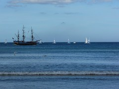 The Endeavour replica and yachts at Whitby (Martellotower) Tags: endeavour replica yachts sunny seaside sea