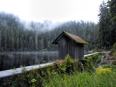 Glaswaldsee Schwarzwald (sigi-sunshine) Tags: lake htteamsee hausamsee schwarzwald blackforest see glaswald glaswaldsee htte wald woods nebel mist fog natur nature karsee blauesauge