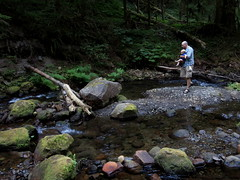 an introduction to lost creek (carolyn_in_oregon) Tags: mthood campinglost creekmt hood national forest al allie jacob oregon