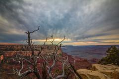 Grand Canyon (ernesto.panatt.photo@gmail.com) Tags: grandcanyon grand canyon usa eeuu desert arizona colorado long exposure