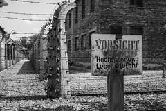 20130801Auswitch I01 (J.A.B.1985) Tags: auswitch poland polonia iiww worldwar iigm guerramundial holocaust holocausto soah