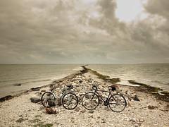rattad all (Teet Liiv) Tags: hiiumaa 2016 suvi touring bicycle estonia digital photography sony pelago saimaa specialized rainy day