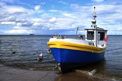 Sopot (suominensde) Tags: sopot poland boat vehicle outdoor sea mar barco seaside shore seascape waterscape landscape paisaje gull gaviota sky cielo cloud nube horizon horizonte vawe ola wave nikon d5300 bird pjaro