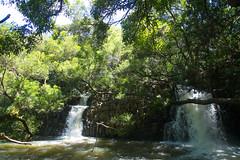 TWIN FALLS (8mr) Tags: haleakala crater twin falls twinfalls road hana maui hawaii 808 vacation travel bucketlist waterfall jungle rainforest oahu