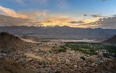 Leh City (K. Apisak) Tags: landscepe ladakh leh light sunset mountain india city cityscape