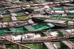 Ninh Binh (superUbO) Tags: vietnam travelphotography ubo ninhbinh boatseries color photographer lonelyplanet documentary photoworks canon reportage livetravel