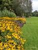 Clyne Gardens 2016 09 30 #21 (Gareth Lovering Photography 3,000,594 views.) Tags: clyne gardens botanical swansea wales flowers trees shrubs park olympus stylus1s garethloveringphotography